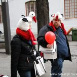 2015 » 05.12.2015 - WELT-AIDS-TAG 2015 in Cottbus